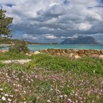 sardinia stock photography64